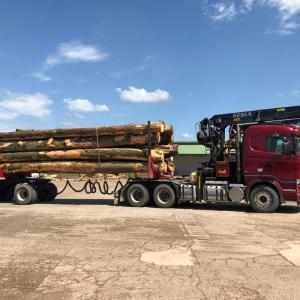 Transport lemn